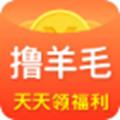 撸羊毛app官方版 1.0
