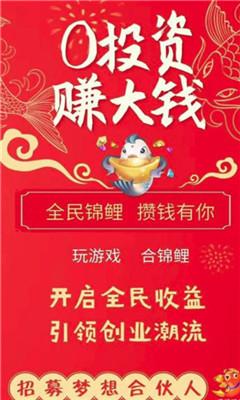 全民锦鲤app手机版1.0截图0