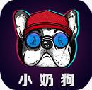 小奶狗app抖音污 1.0