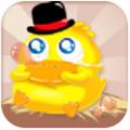 养鹅达人app手机安卓版 1.0