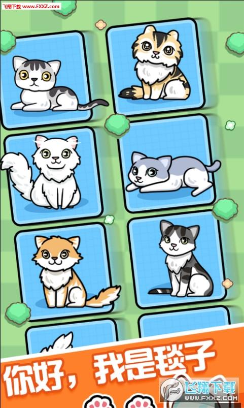 养猫达人app官方红包版1.0截图0