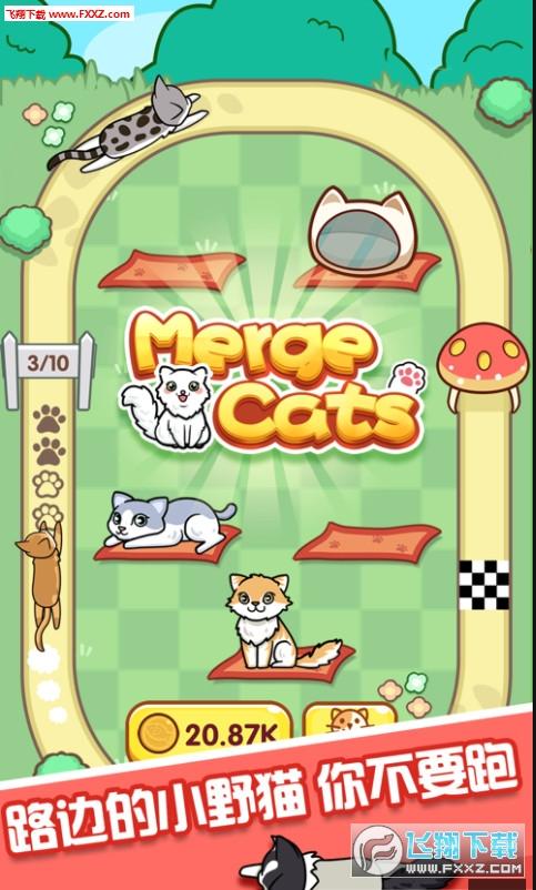 养猫达人app官方红包版1.0截图2