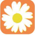 雏菊任务app2020官方版 1.0