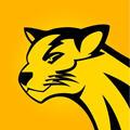 金猫试玩安卓正式版v1.0