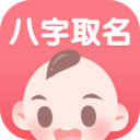 宝宝八字起名宝典安卓版 v1.0