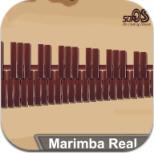 Marimba Real游戏 v1.0.1
