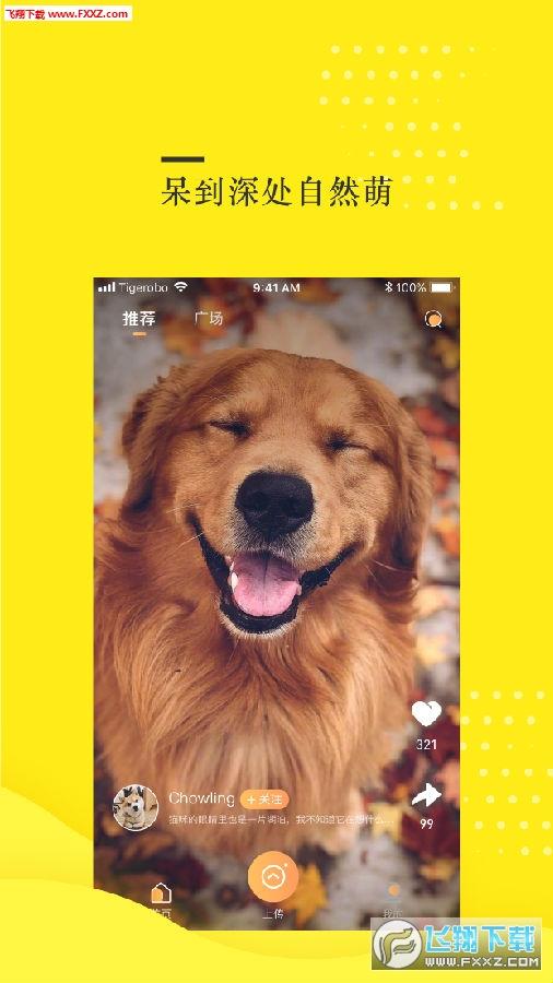 蛋挞短视频app最新版