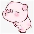 全民养猪appv1.0.0