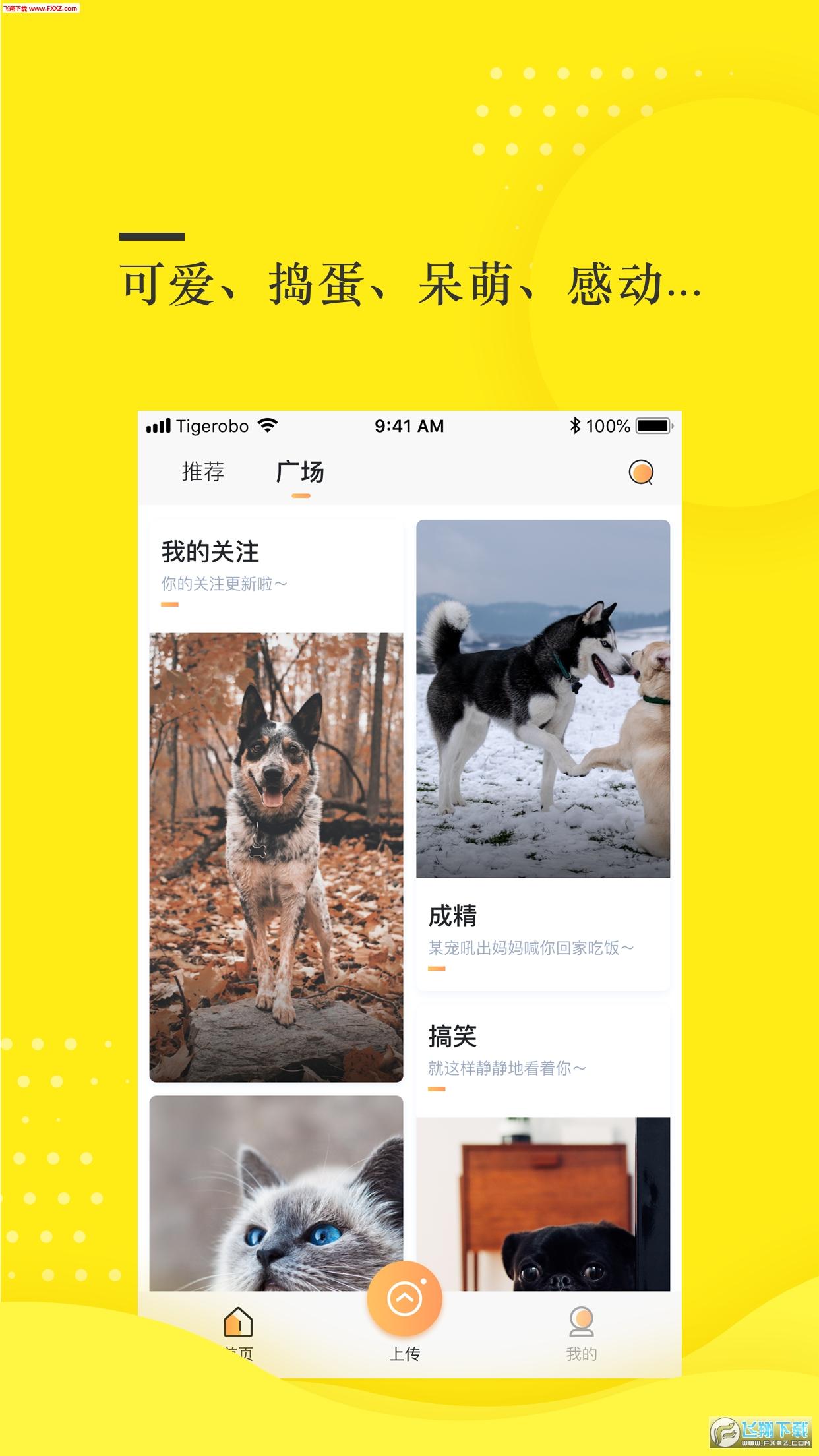蛋挞短视频app最新版1.0.0截图0