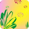 五彩口袋贷款app v1.0.1