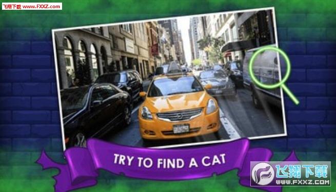 隐藏之猫安卓版1.0截图2