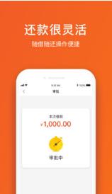 坚硬果贷app1.0截图2