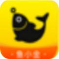金小鱼贷款app 1.0