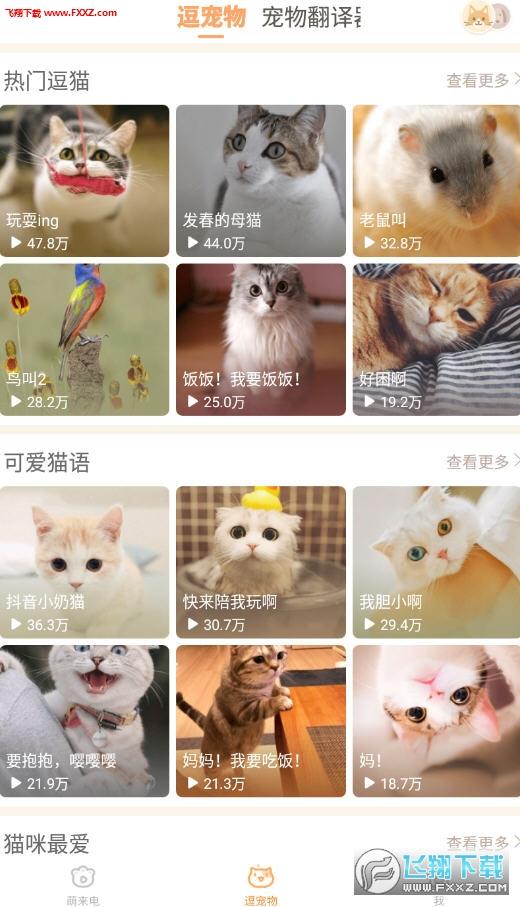 逗猫子app