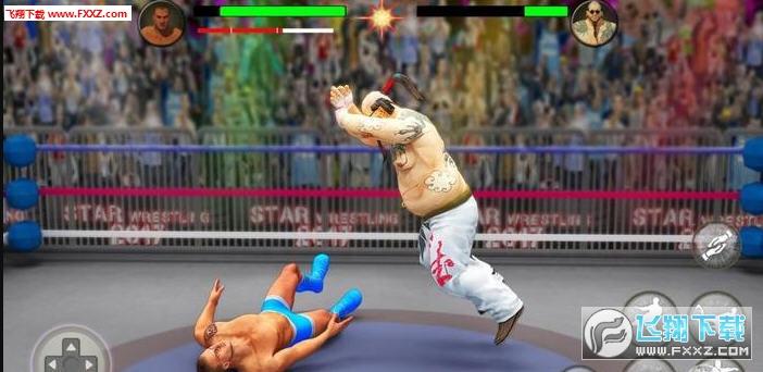 Wrestling安卓版1.39截图2