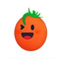 番茄视频最新破解版 2.4