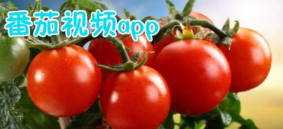 番茄视频app下载_番茄视频app无限看