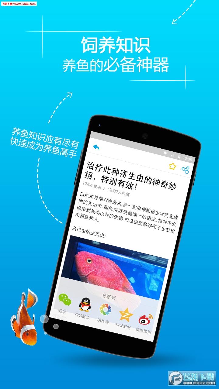全民养鱼区块链赚app1.0截图1