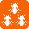 蚂蚁接单app安卓版v1.1