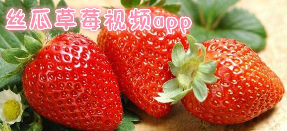 丝瓜草莓视频app_丝瓜草莓视频破解版