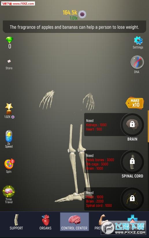 人体模型1.0截图0