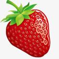 草莓转app手机版 v1.0.0