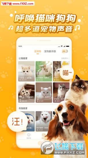 逗猫子app6.6.6.2截图3