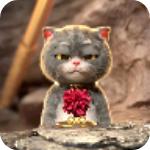 猫戴金箍动态壁纸app1.0
