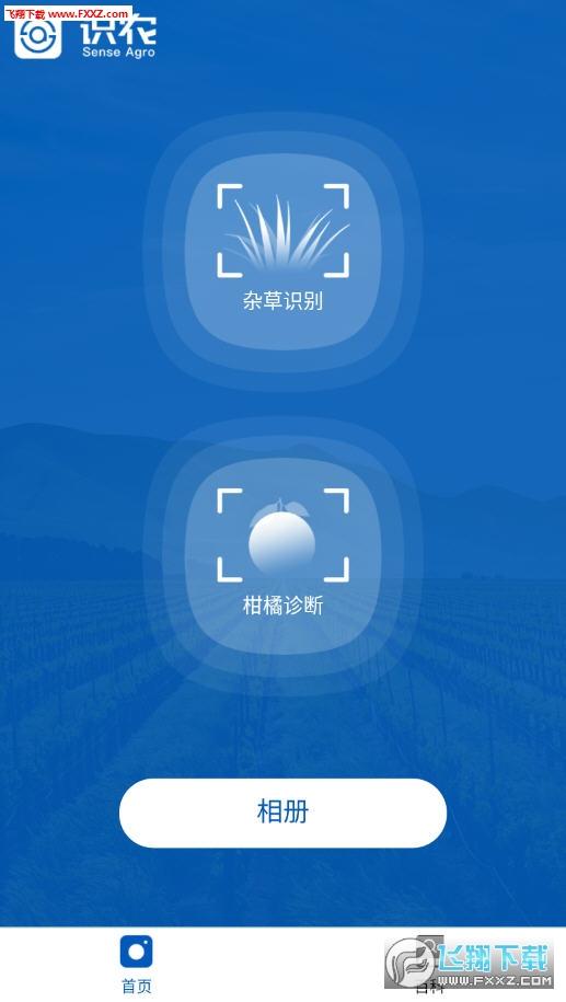 识农app安卓版