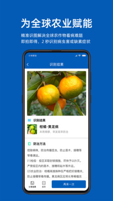 识农app安卓版1.0.0截图0