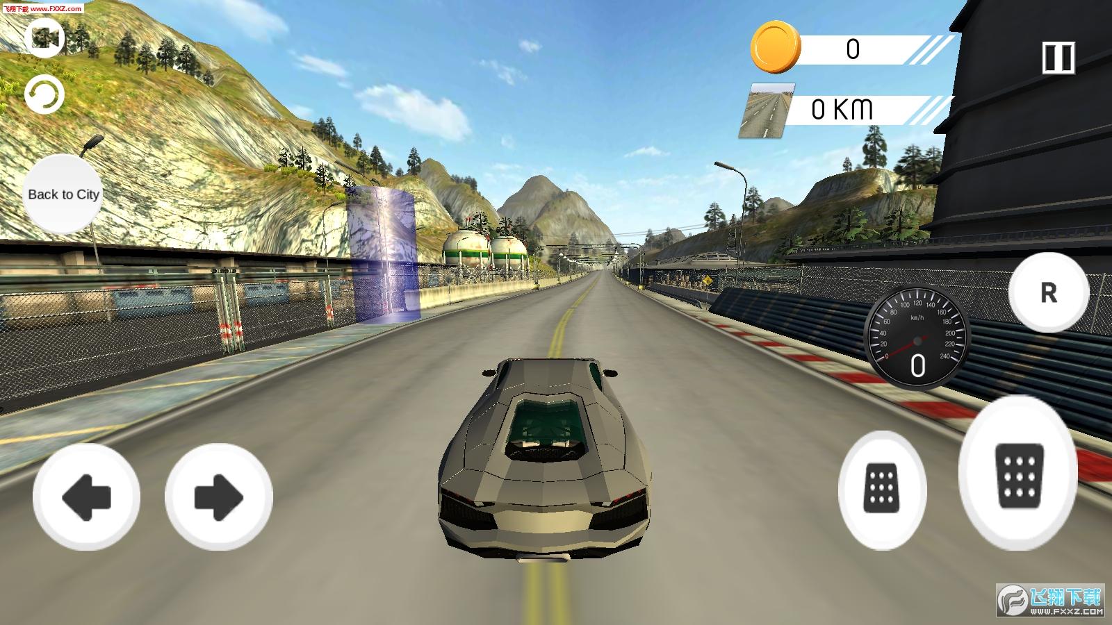 极端汽车驾驶2019游戏1.0截图0