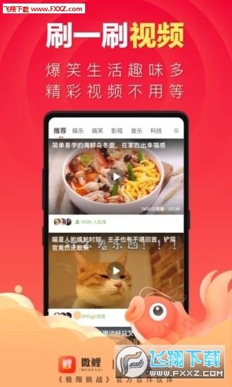 微鲤app官网版1.0截图2