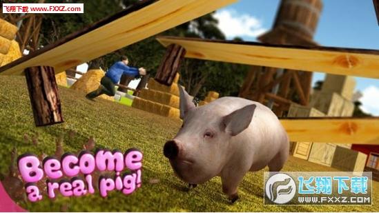 猪的一生模拟器手游截图0