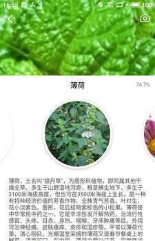 森林百科1.9.8截图2