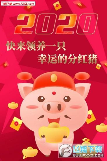 陀螺养猪赚钱app2020最新版