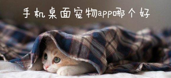 手机桌面宠物app_二次元桌面宠物app_桌面宠物免费app