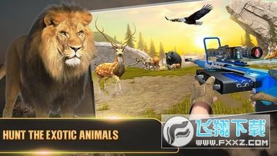 非常野生猎鹿模拟器手游v1.8 安卓版截图1