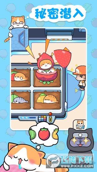 蓝星猫猫教安卓中文版v2.13.2最新版截图1