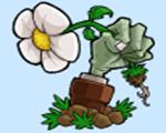 植物大战僵尸原版v1.0汉化版
