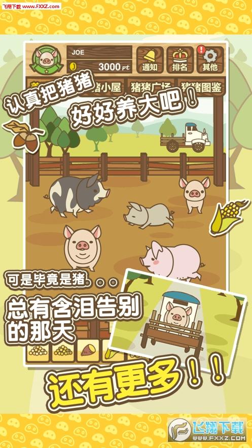 金猪养猪场养殖赚钱app安卓版