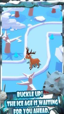 动物追逐赛安卓版v1.5截图2