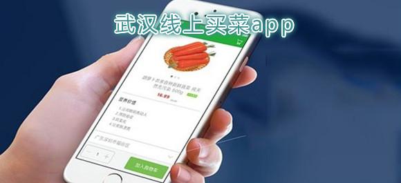 武汉线上买菜app有哪些_武汉送菜上门的平台