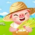 金币养猪场红包版app正式版1.0.0