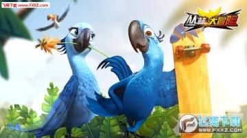 丛林鸟大冒险