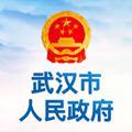 武汉市人民政府官网appv0.0.1安卓版