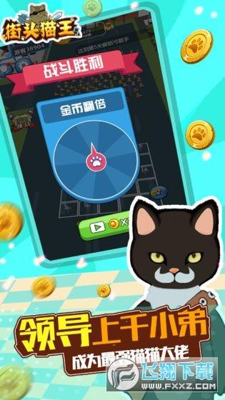 街头猫王免广告v1.0修改版截图3