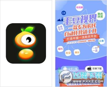 毛豆视界赚钱appv1.0 安卓版截图0