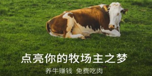 养牛赚钱游戏合集_养牛游戏赚钱是真的吗_靠谱吗