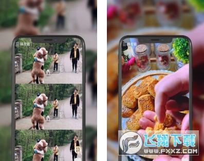 趣拍短视频赚钱appv1.0 安卓版截图0