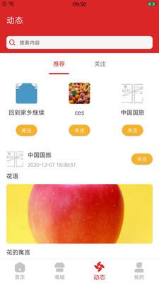 临淄文旅云客户端v1.0安卓版截图1